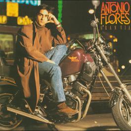 Gran Via 2004 Antonio Flores