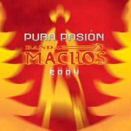Pura pasión 2004 Banda Machos