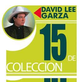 15 De Coleccion 2004 David Lee Garza