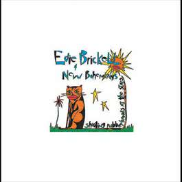 Shooting Rubberbands At The Stars 2006 Edie Brickell & New Bohemians