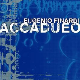 Accadueo 2004 Eugenio Finardi