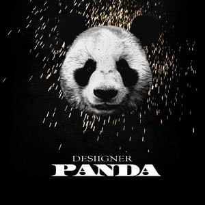 ฟังเพลงใหม่อัลบั้ม Panda