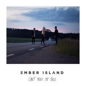 ฟังเพลงใหม่อัลบั้ม Can't Feel My Face