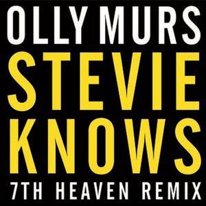 ฟังเพลงใหม่อัลบั้ม Stevie Knows
