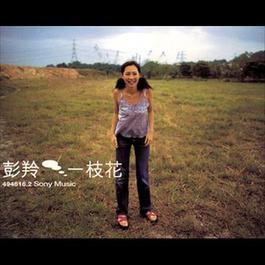 一枝花 1999 彭羚