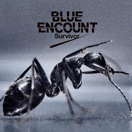 Survivor 2016 BLUE ENCOUNT