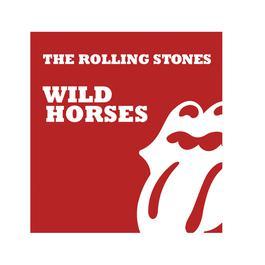 Wild Horses 2009 The Rolling Stones