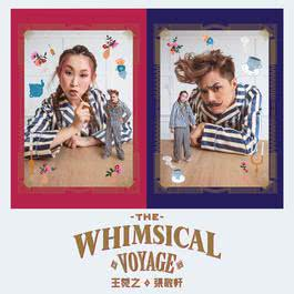 The Whimsical Voyage