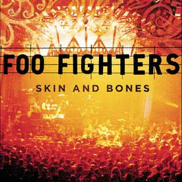 Skin And Bones 2016 Foo Fighters