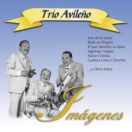 Imágenes 2010 Trio Avileo