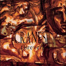 Forever 1993 Cranes
