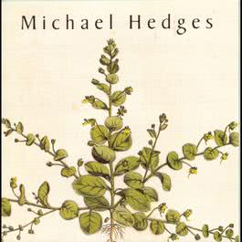 Taproot 1990 Michael Hedges
