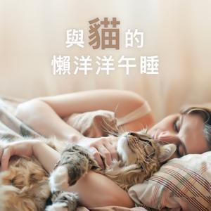 與貓的懶洋洋午睡