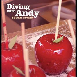 Sugar Sugar 2009 Diving with Andy