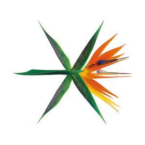 THE WAR - The 4th Album (Korean Ver.)
