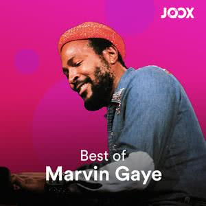 Best of: Marvin Gaye