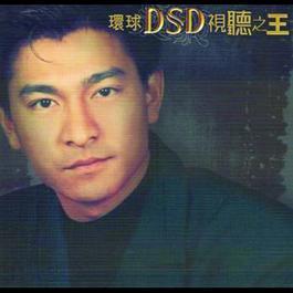 Shi Ting Zhi Wang 2010 Andy Lau (刘德华)