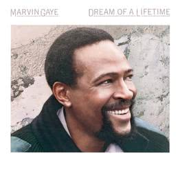 Dream Of A Lifetime 1987 Marvin Gaye