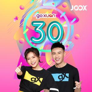 GOXUAN 30