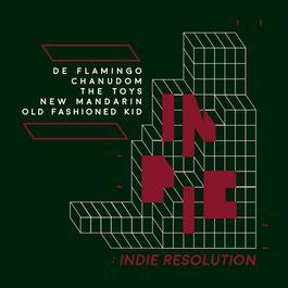 ฟังเพลงอัลบั้ม INDIE RESOLUTION
