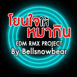 ฟังเพลงอัลบั้ม โยนใจให้หมากิน (EDM RMX PROJECT) - Single