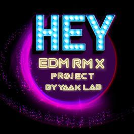 ฟังเพลงอัลบั้ม HEY... (EDM RMX Project by Yaak Lab) - Single
