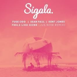 ฟังเพลงอัลบั้ม Feels Like Home (Jus Now Remix)