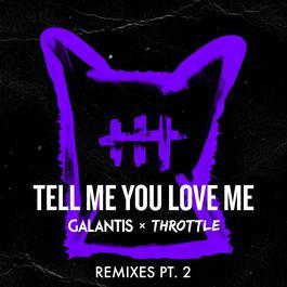 ฟังเพลงอัลบั้ม Tell Me You Love Me (Remixes Pt. 2)