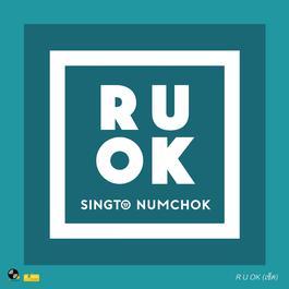ฟังเพลงอัลบั้ม R U OK (เช็ด)