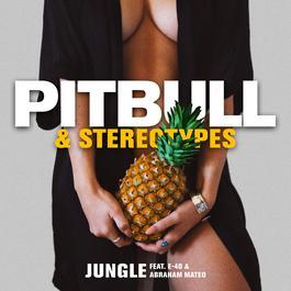 ฟังเพลงอัลบั้ม Jungle