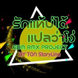 ฟังเพลงอัลบั้ม รักแท้บ่ได้แปลว่าโง่ (EDM RMX Project by TONStoryLine) - Single