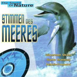 ฟังเพลงอัลบั้ม Stimmen des Meeres