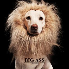อัลบั้ม THE LION
