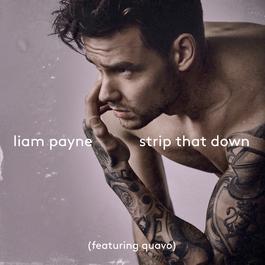 อัลบั้ม Strip That Down