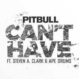 ฟังเพลงอัลบั้ม Can't Have