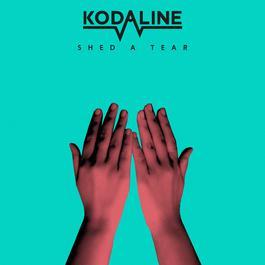 ฟังเพลงอัลบั้ม Shed a Tear