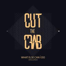 อัลบั้ม ต่อไปแบบนี้ต่อไป (What Else Can I Do) - Single