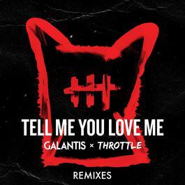 ฟังเพลงอัลบั้ม Tell Me You Love Me (Remixes)