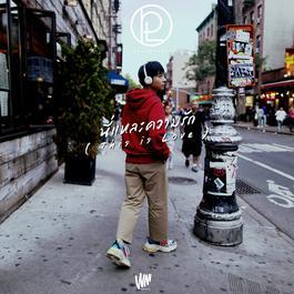 ฟังเพลงอัลบั้ม นี่แหละความรัก (This is Love) - Single