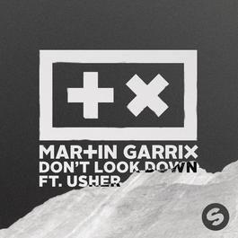 เพลง Martin Garrix