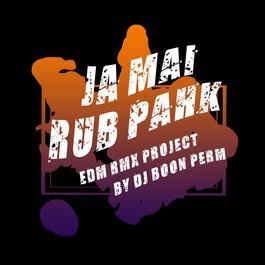 ฟังเพลงอัลบั้ม จะไม่รับปาก (EDM RMX PROJECT) - Single