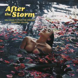 ฟังเพลงอัลบั้ม After The Storm