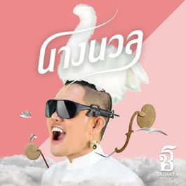 ฟังเพลงอัลบั้ม นางนวล(Seagull) - Single