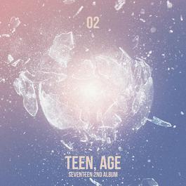 ฟังเพลงอัลบั้ม SEVENTEEN 2ND ALBUM 'TEEN, AGE'
