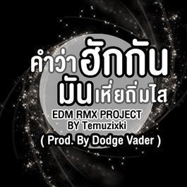 ฟังเพลงอัลบั้ม คำว่าฮักกัน มันเหี่ยถิ่มไส (EDM RMX PROJECT) - Single