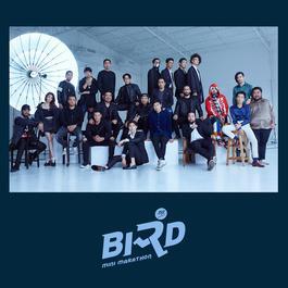 ฟังเพลงอัลบั้ม BIRD MINI MARATHON