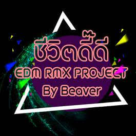 ฟังเพลงอัลบั้ม ชีวิตดี๊ดี (EDM RMX Project by Beaver) - Single