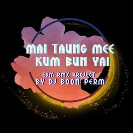 ฟังเพลงอัลบั้ม ไม่ต้องมีคำบรรยาย (EDM RMX PROJECT) - Single