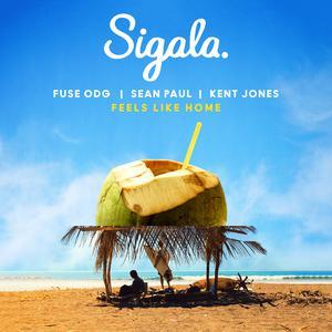 ฟังเพลงใหม่อัลบั้ม Feels Like Home