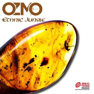 ฟังเพลงใหม่อัลบั้ม Ethnic Jungle - Single